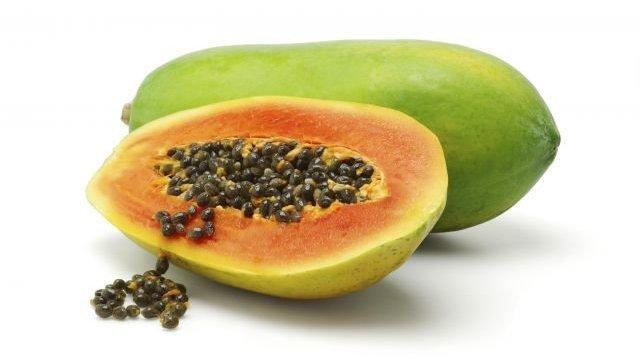 Papája – melounový strom
